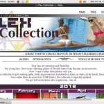 Flex Collection Discount Membership