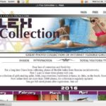Save On Flex-collection.com